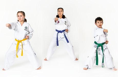 Taekwon-Do Jeugd is speciaal voor jongeren tussen de 7 en 11 jaar.